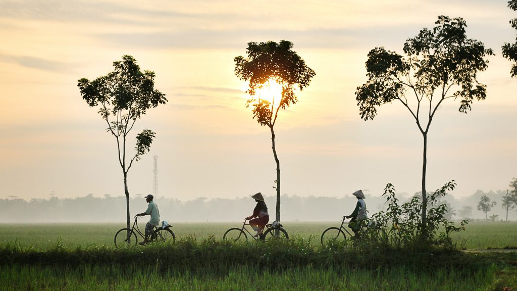 Joy-of-Cycling-Andrew-Stead-Personal-Thoughts-Your-Daily-Bread